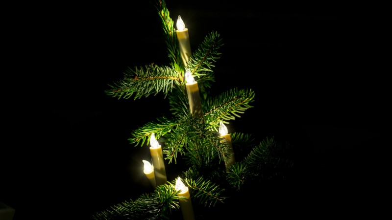 Kabellose LED Lichterkette für den Weihnachtsbaum von Krinner im Test Review Vergleich Weihnachten Beleuchtung Lumix Classic Mini Basis Set