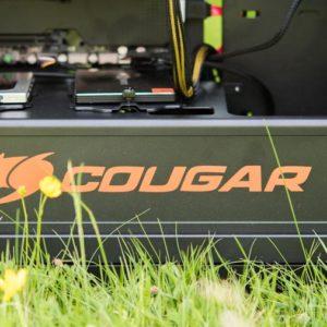 Der Cougar Panzer im Test