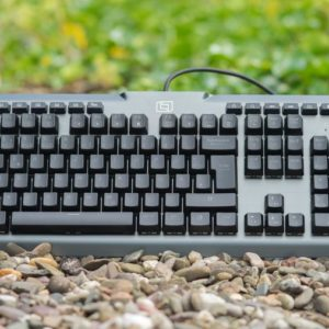 Die Lioncast LK300 RGB Mechanische Tastatur im Test