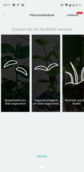 Flower Care App (4)