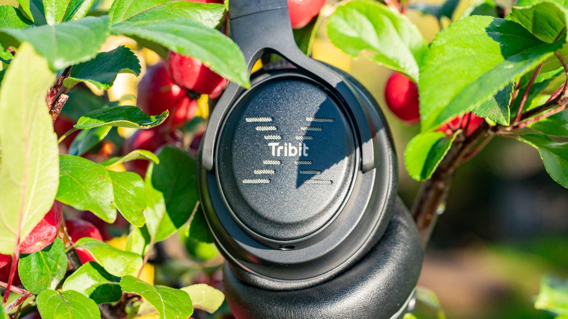Die Tribit XFree Go im Test, die besten Bluetooth Kopfhörer die Ihr für 30€ bekommen könnt!