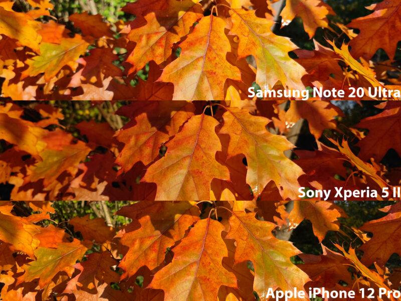 Kamera Vergleich 1