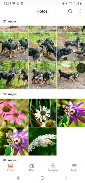 Synology Photos App (3)