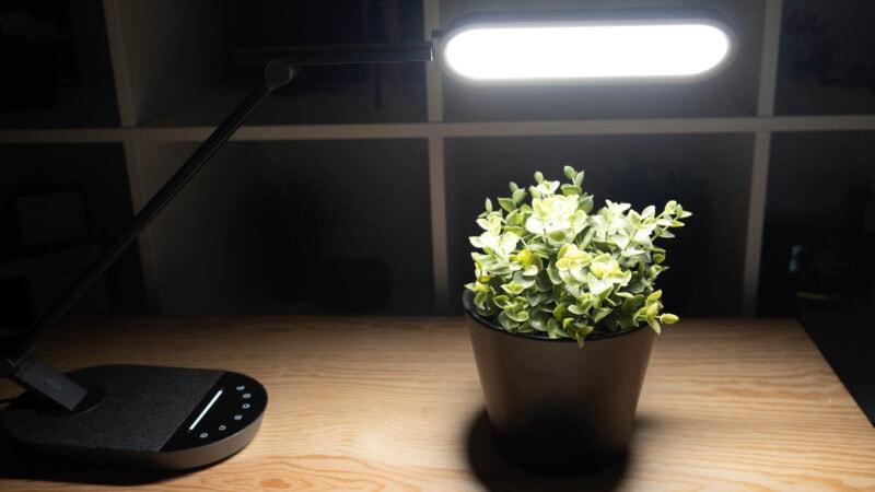Schreibtischlampe Mit Bester Led Qualität Taotronics Tt Dl056 Im Test 16